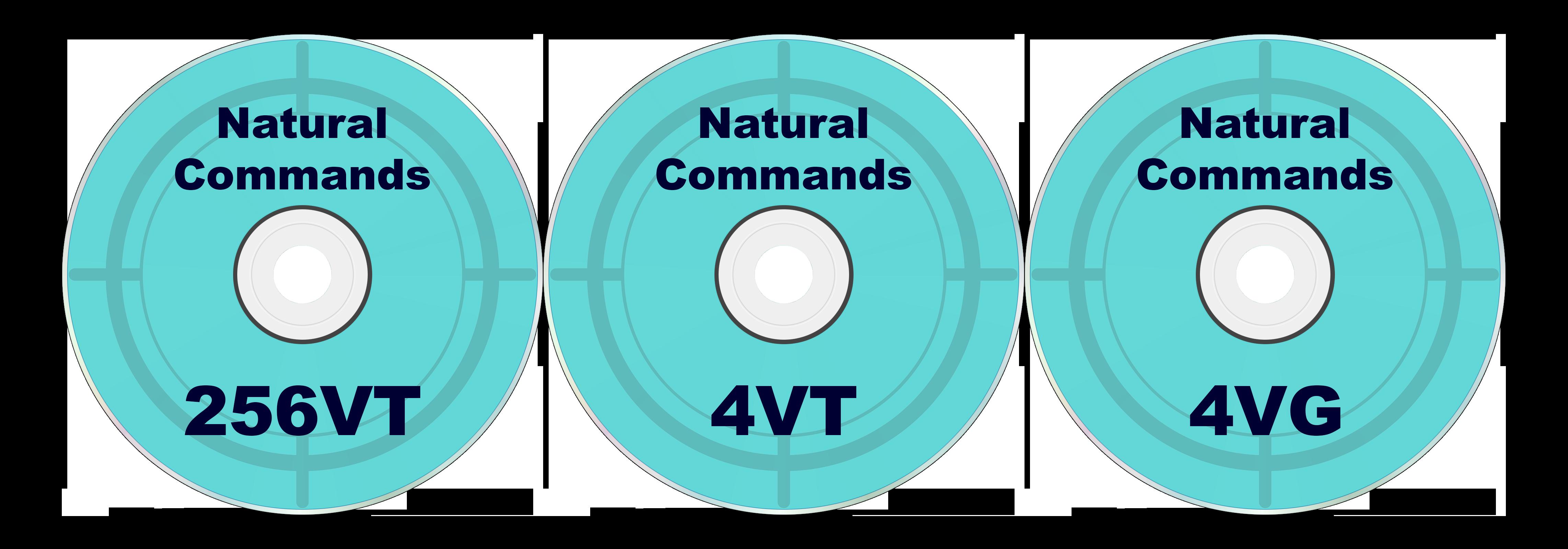 Natural Commands